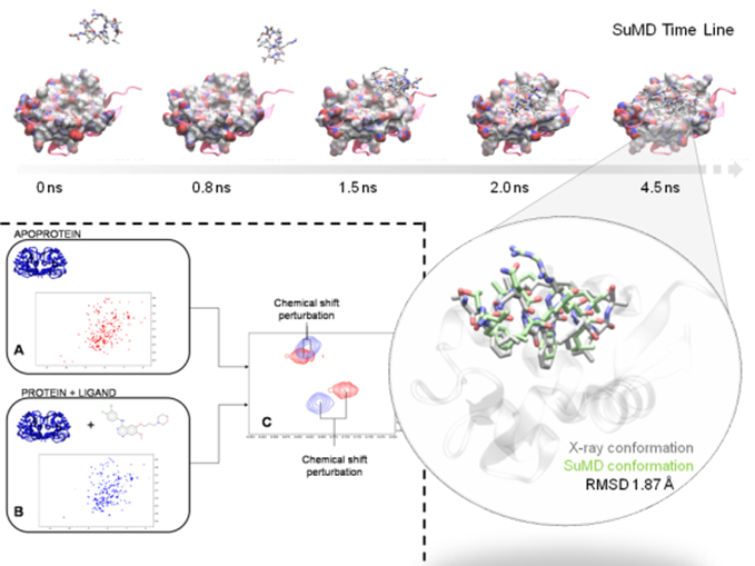 Synthesis, biological evaluation and molecular docking