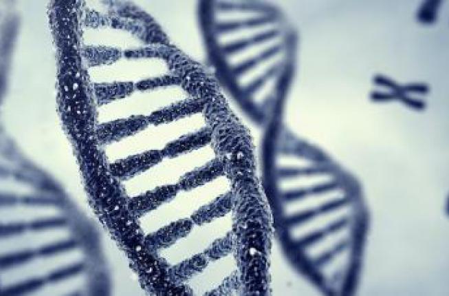 Collegamento a Dallo studio dei g-quadruplex indicazioni utili per progettare nuovi farmaci oncoterapici